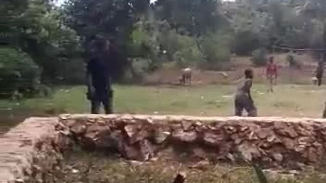 Silly chilly games of Africa
